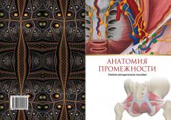 Анатомия промежности: учебно-методическое пособие