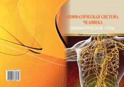 Лимфатическая система человека. Лимфатические узлы: учебно-методическое пособие